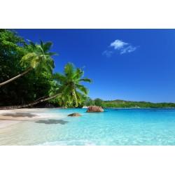 Karibik 2